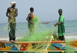 Pêche-Mauritanie: 351 pirogues immobilisées à Nouadibou, les acteurs sollicitent l'intervention des autoritées
