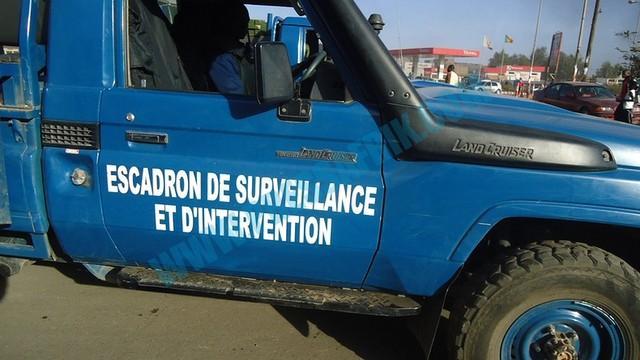 Saly: des voleurs de moutons ouvrent le feu sur les gendarmes