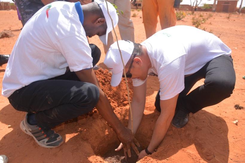 Mois de l'environnement : LAS participe au lancement de l'opération « 100 millions de graines pour la terre »