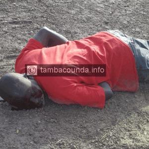 Manifestation du M23 à Tamba : La police tire sur les manifestants, deux blessés dont le commissaire de police