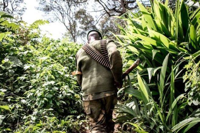 Plus de 900 victimes de violences sexuelles en RDC en un an