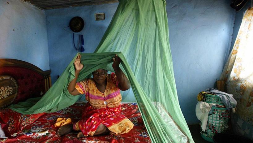Congo-Brazzaville: distribution de masse de moustiquaires imprégnées