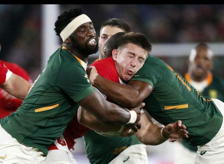 Mondial de Rugby : les Sud-Africains éliminent les Gallois et rejoignent l'Angleterre en finale