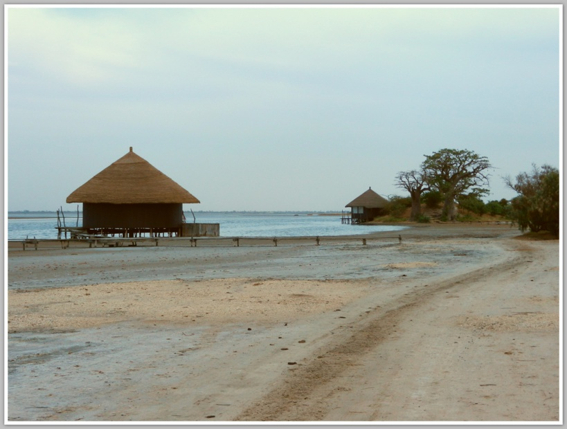 L'homme d'affaires espagnole Luis Rui, arrêté et inculpé à Miami a acquis 25 hectares de terre au Sénégal