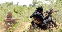 « L'Etat du Sénégal avait déjà nourri les rebelles avant l'arrivée du président Wade » (analyste)