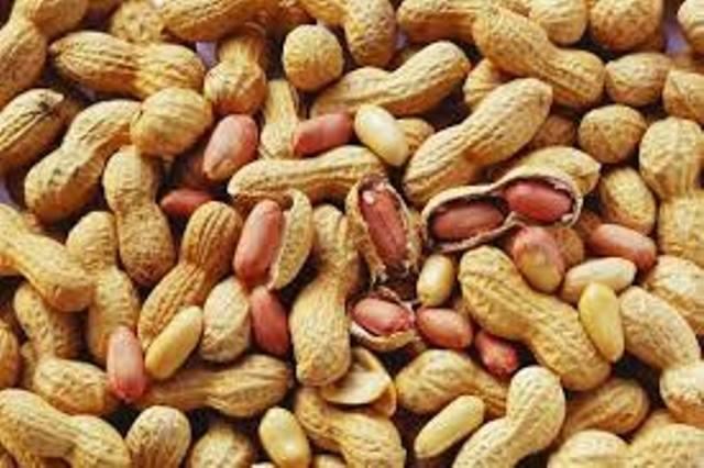 Commercialisation de l'arachide: le ministre de l'Agriculture plaide pour le patriotisme économique