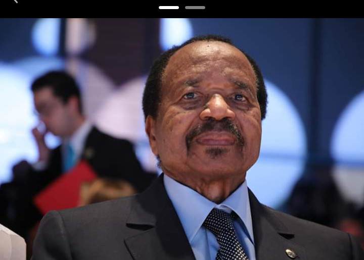 Cameroun: le statut spécial des régions anglophones examiné par les députés