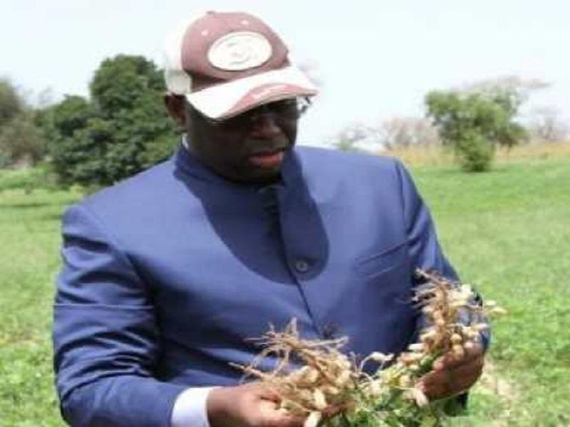#AdresseALaNation2019 - Macky Sall fixe le kilogramme de l'arachide