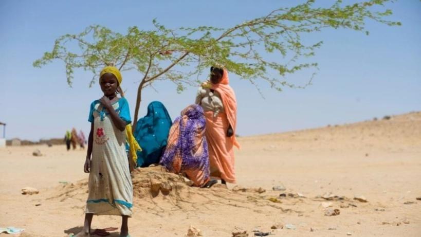 Les Soudanais réfugiés au Tchad racontent leur enfer au Darfour