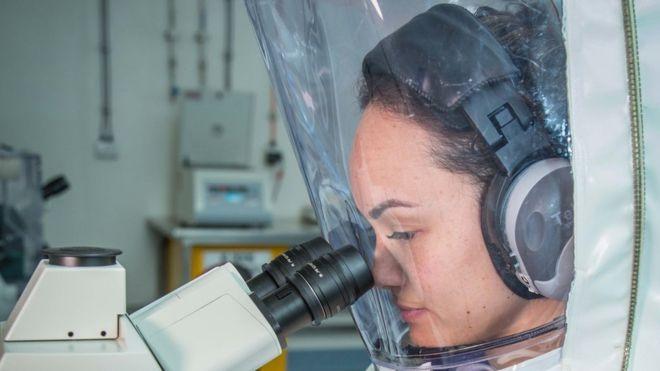 Coronavirus : les scientifiques espèrent trouver un vaccin en un temps record