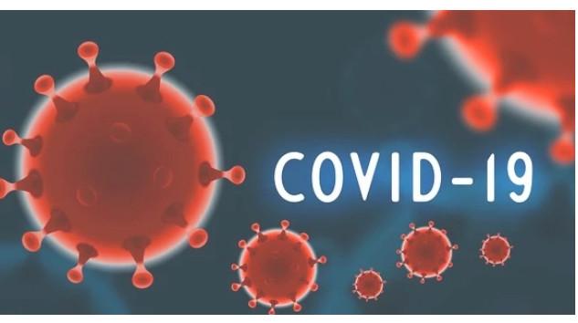 COVID-19 - Qu'en pensent les auditeurs internes et spécialistes en management des risques ?