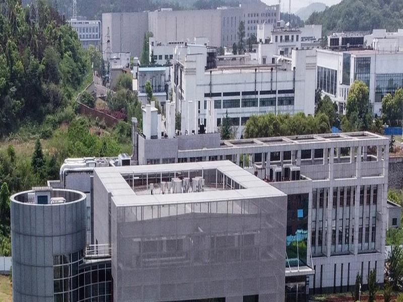 Coronavirus : le laboratoire chinois de Wuhan, pointé du doigt, nie être à l'origine de la pandémie