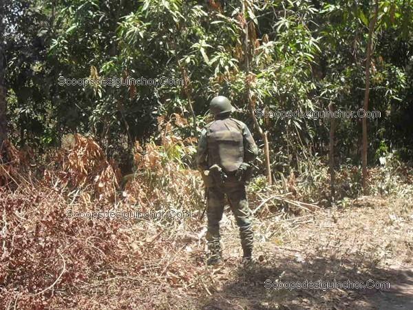 Libération des soldats otage par les rebelles Casamançais: Sommes-nous patriotes de circonstance ?