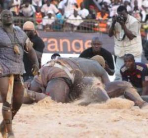 Bilan de la saison de lutte 2011/2012: Sang, violences et alternance au sommet