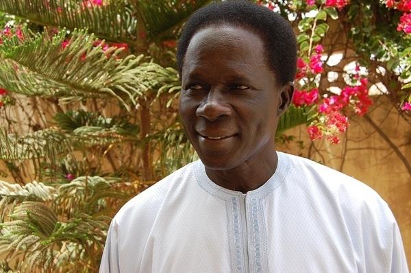 Reformes institutionnelles : les avis d'Ibrahima fall