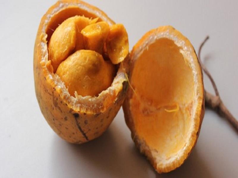 Le Saban, un fruit riche en vitamine c et en vitamine B6