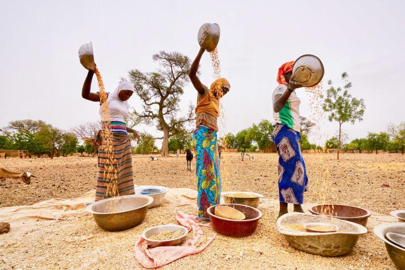 Afrique de l'Ouest et centrale : le nombre de personnes souffrant d'insécurité alimentaire pourrait atteindre 57,6 millions d'ici fin 2020 (PAM)