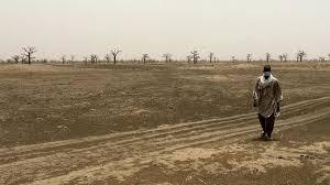 Le casse-tête de la question foncière au Sénégal: le litige de Ndingler