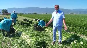 Frappé par le Covid-19, le secteur agricole italien à la peine