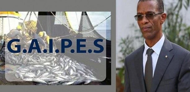 Demande de licences de pêche de Sopasen: le ministre Alioune Ndoye fait  le mort