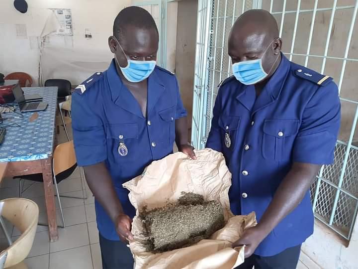 Mbour : 25 kg de chanvre indien saisis en deux jours par les gendarmes
