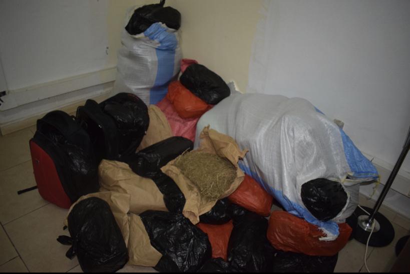 La police interpelle 7 individus et saisit 68 kg de chanvre indien chez eux