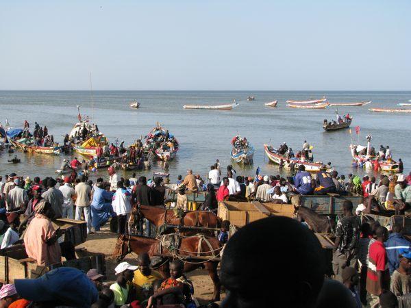 Pêche artisanale : Les chinois prennent la place des sénégalais en Mauritanie