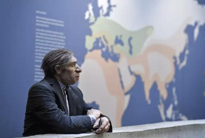 Covid-19 : un fragment d'ADN hérité de Néandertal favorise les formes graves de la maladie