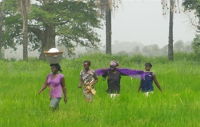 Reportage-Casamance: après 30 ans de conflit, les populations toujours dans l'attente de la paix