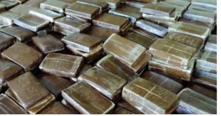 La Douane saisit 1376 kg de chanvre indien à Kidira