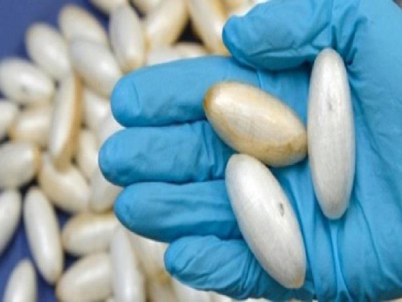 Trafic de drogue entre Dakar et l'Italie: une Sénégalaise de 49 ans tombe avec 1,5 kg de cocaïne