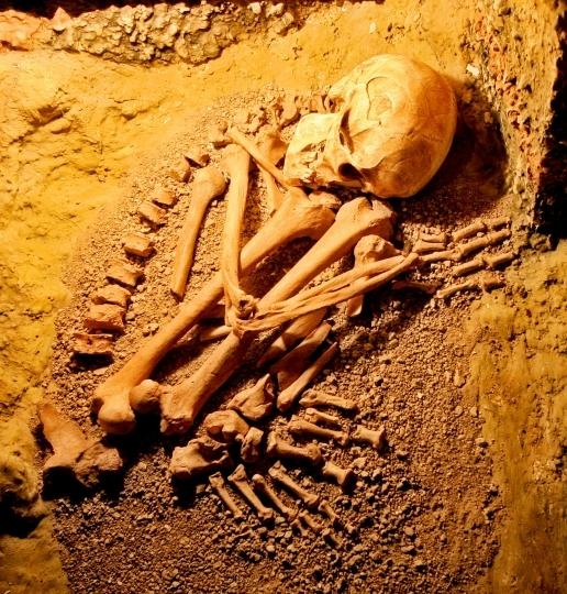 Pyrénées-Atlantiques: Le corps d'une randonneuse dévoré par des vautours