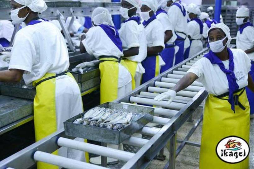Mbour : les 75 travailleurs licenciés par l'entreprise Ikagel menacent de bloquer le fonctionnement de l'usine