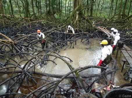 Pollutions par hydrocarbures en mer et sur le littoral: l'ISMI mise sur une formation à Abidjan pour freiner le fléau