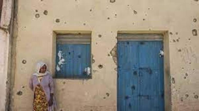 Le Conseil de sécurité toujours divisé sur le Tigré, où la situation empire selon l'ONU