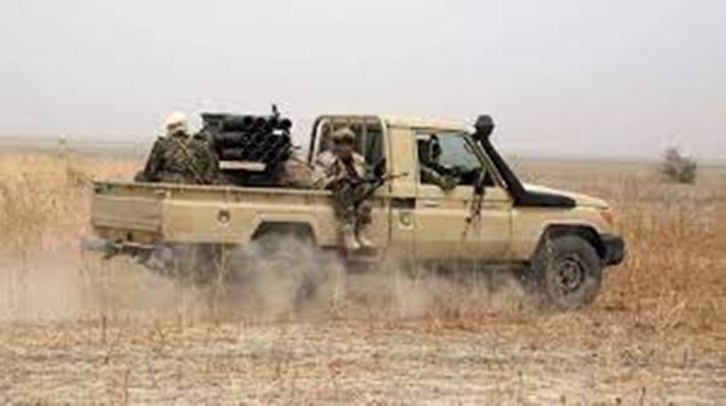 Tchad : les rebelles du Fact progressent à l'intérieur du pays