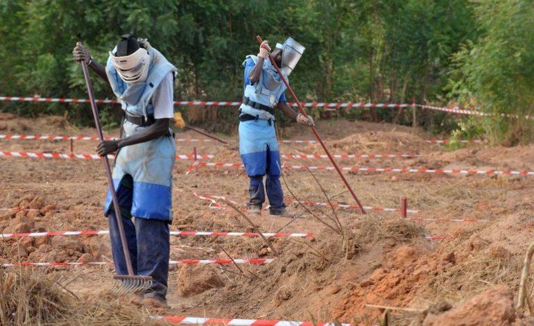 Casamance: Aissata Tall Sall annonce le déminage de 200 localités d'ici 2026