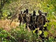 Centrafrique: mais où est donc l'insaisissable Joseph Kony ?