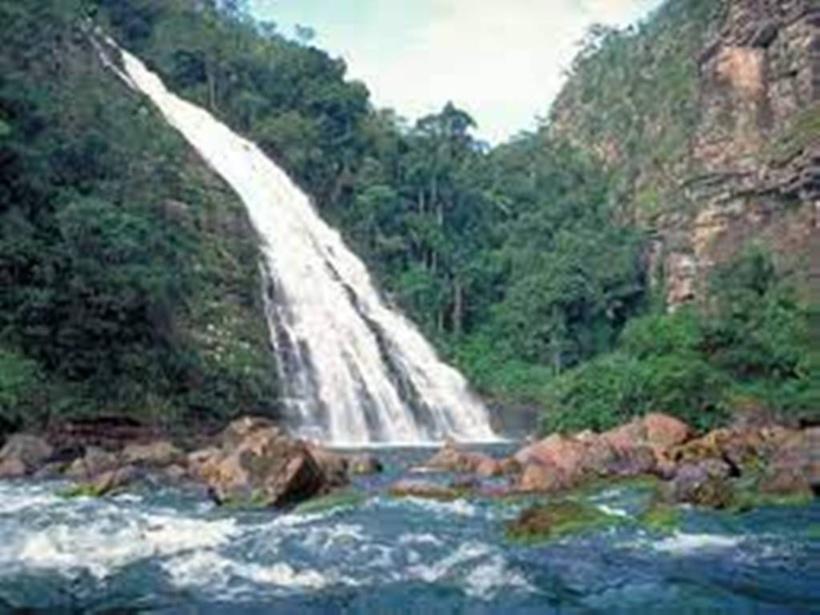 Bolivie: deux laboratoires de fabrication de cocaïne découverts dans un parc naturel