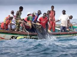 Pêche: le gouvernement d'Abdoul Mbaye face aux défis des « énormes difficultés » qui plombent le secteur