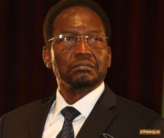 Dioncounda Traoré poursuit ses consultations sur l'avenir politique du Mali