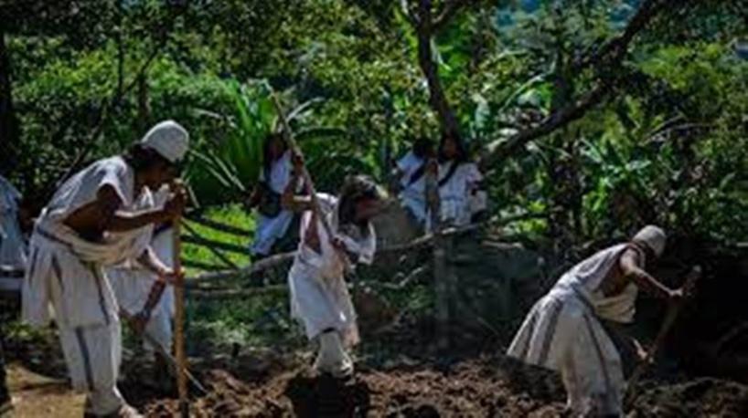 Colombie: chez les Arhuacos, un peuple indigène dans le besoin