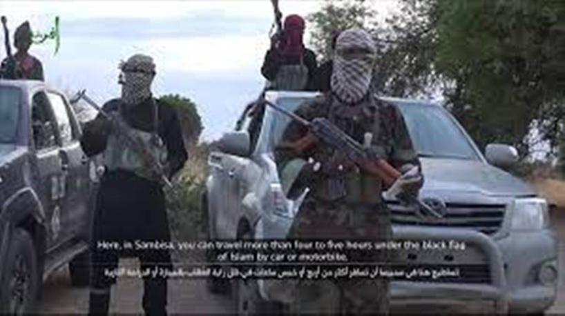 Nigeria: «Cette offensive du groupe EI dans la forêt de Sambisa est une nouveauté»