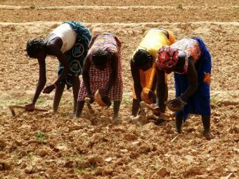 Action contre la faim préoccupée par la situation dans le Sahel