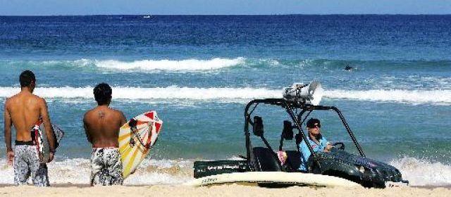 Australie: un surfeur assommé par la queue d'une baleine