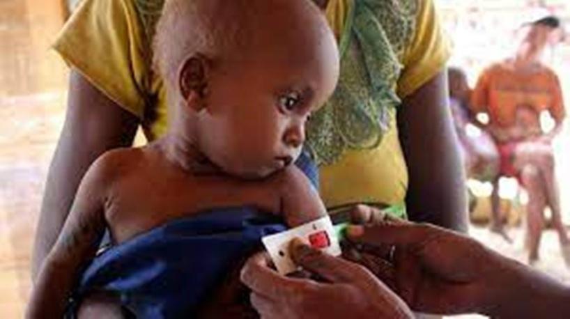 Madagascar: le directeur du PAM dans le Sud en raison de la famine
