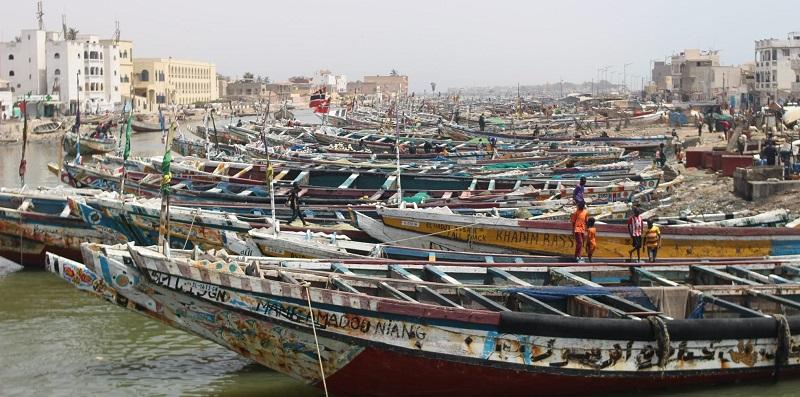 """Greenpeace Africa:  """"La société gazière BP et ses partenaires prêts à détruire un écosystème unique et déstabiliser le climat"""""""