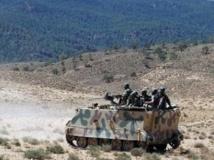 L'armée tunisienne a lancé une opération militaire aux abords du mont Chaambi près de la frontière algérienne. AFP PHOTO/ABDERRAZEK KHLIFI