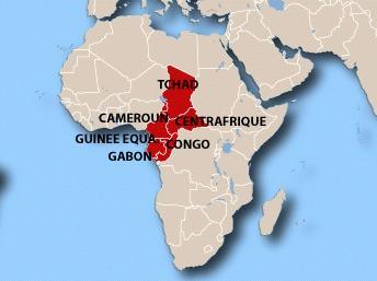 Les six pays de la Cémac: le Tchad, la République centrafricaine, le Congo, le Gabon, la Guinée équatoriale et le Cameroun. Latifa Mouaoued/RFI