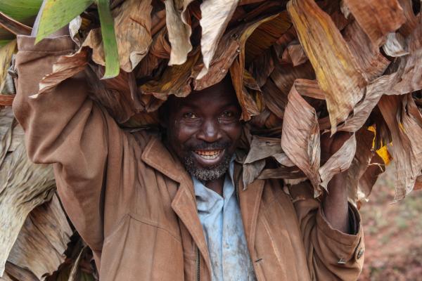 Les paysans burundais confrontés à la privatisation de la filière café